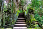 Sacred Monkey Forest Sanctuary, Ubud, Bali, Indonesia